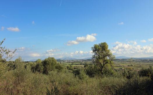 Solar rústico Muro Mallorca
