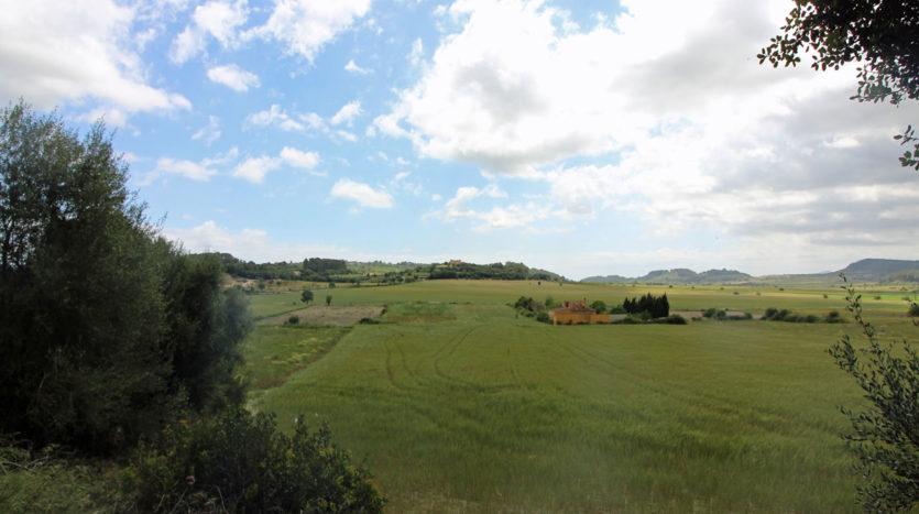 Solar entre Montuiri y Loret Municipio San Juan Mallorca